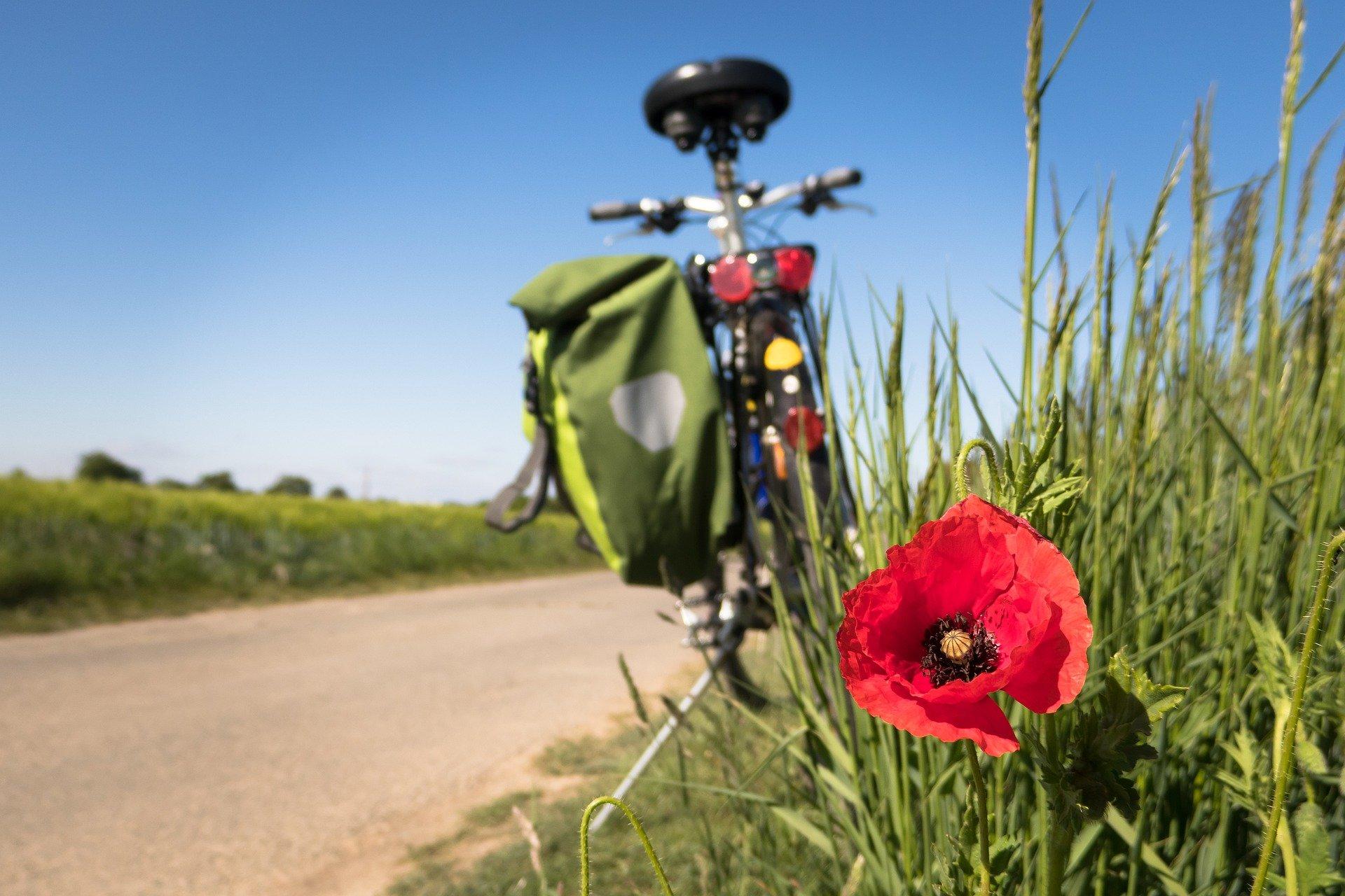 Ilustracja do informacji: Jeździsz rowerem? Rekreacyjnie a może nawet wyczynowo?