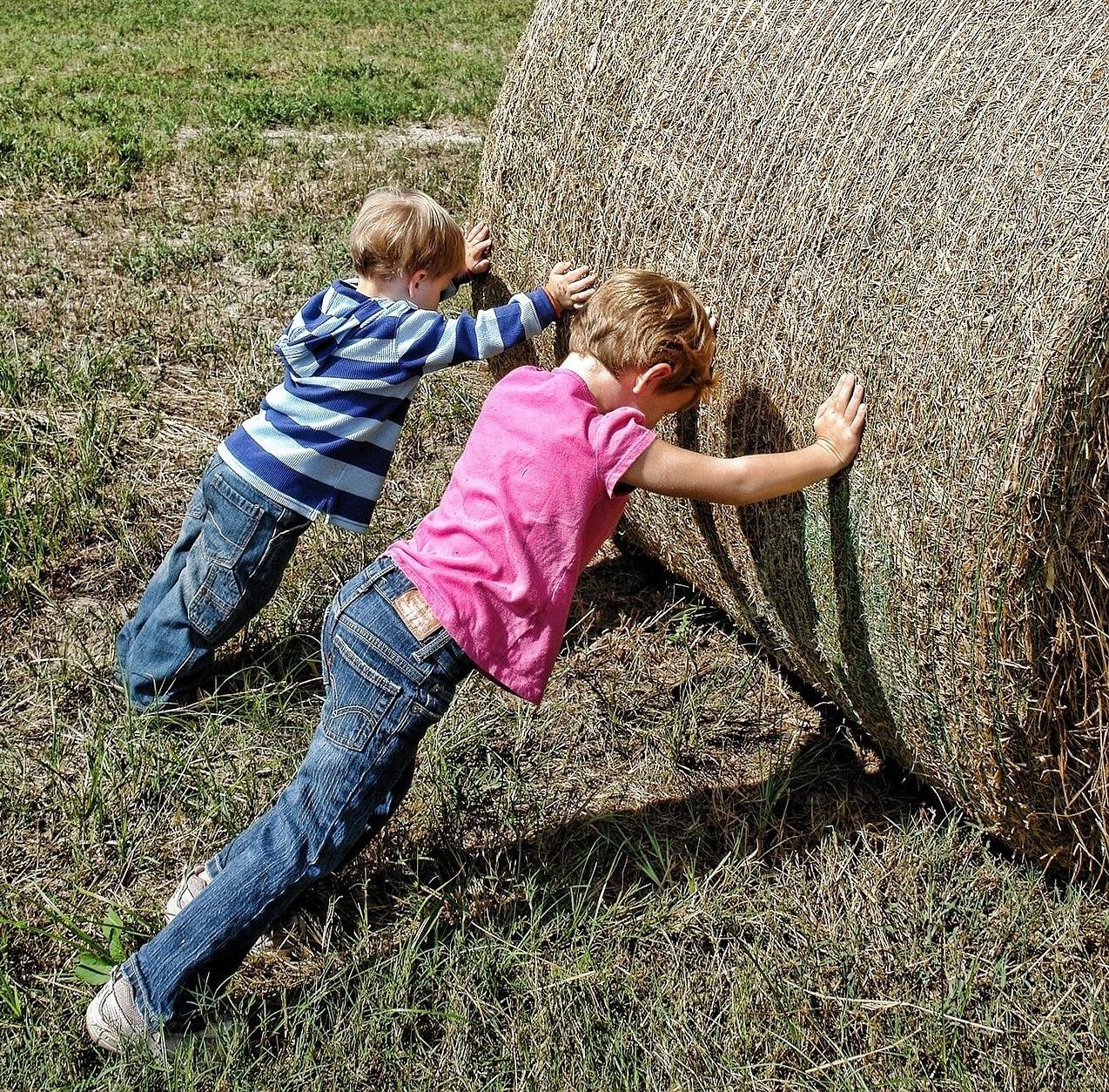 Ilustracja do informacji: Twoje dziecko pomaga w gospodarstwie? Zadbaj by było bezpieczne